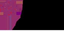 VfGH Logo